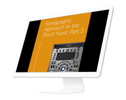 Sonographic Approach to the Shunt Hunt: Part 2 (1 CE credit)