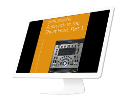 Sonographic Approach to the Shunt Hunt: Part 1 (1 CE credit)