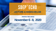 SDEP® ECHO Lecture & Hands-on Ultrasound Scanning Lab Nov. 6-8, 2020